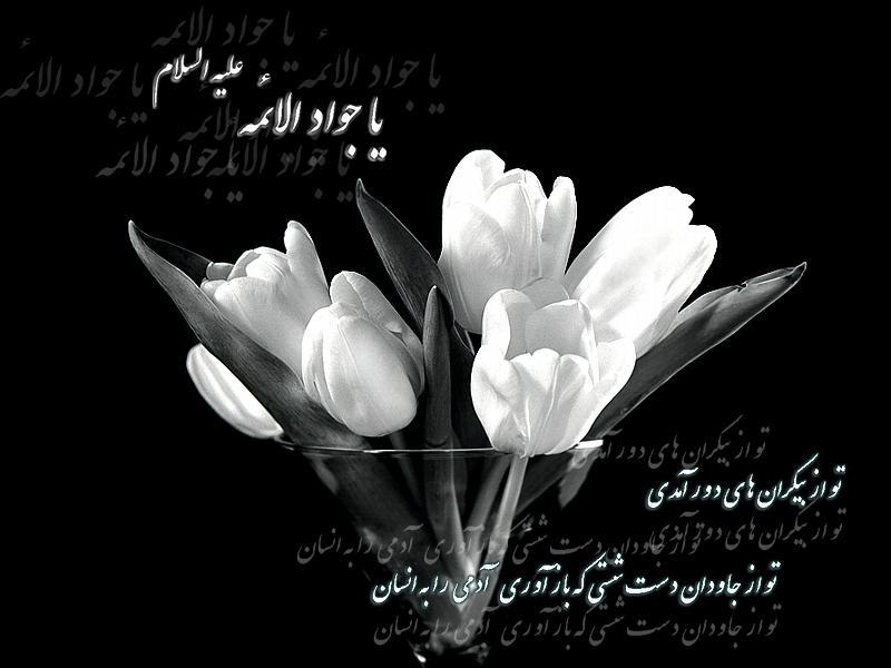 شهادت حضرت جواد الائمه علیه السلام تسلیت باد . سیدعلی افشاری